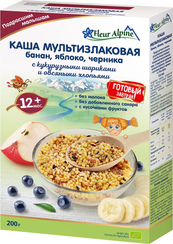 Каша Fleur Alpine Готовый завтрак мультизлаковая Банан Яблоко Черника с 12 месяцев 200г (упаковка 2 шт.)